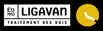 Logo Ligavan